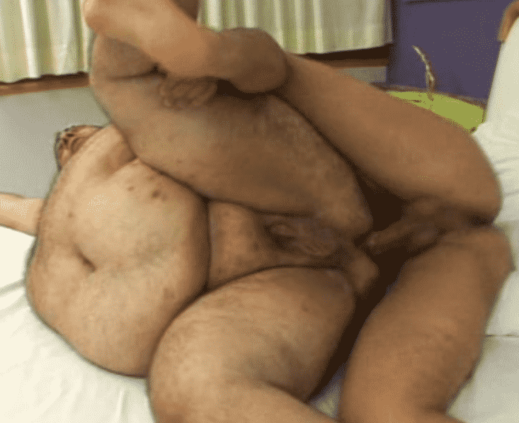 Video porno de gatito gordo